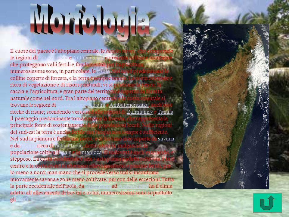 Le montagne che corrono lungo la parte centrale dell isola, sull asse nord-sud, dividono il sistema dei fiumi del Madagascar in due versanti: il versante occidentale, rappresentato da fiumi navigabili che scendono lentamente verso ovest fino al Canale del Mozambico, tra i quali vi sono i maggiori fiumi dell isola: il Betsiboka, la Tsiribihina, il Mangoky e l Onilahy, e il versante orientale, i cui corsi d acqua, più brevi ed impetuosi, sfociano ad est nell Oceano Indiano.Il lago più vasto è l Alaotra, situato a circa 7 km da AmbatondrazakaCanale del Mozambico BetsibokaTsiribihina MangokyOnilahyOceano IndianoAlaotraAmbatondrazaka