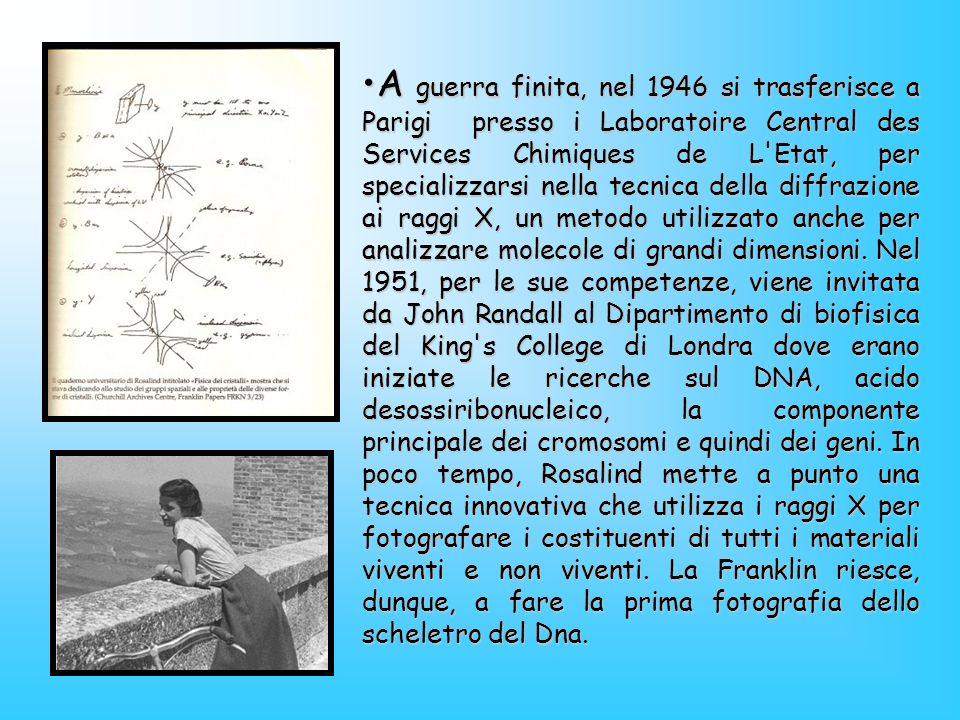 Come scienziata, la signorina Franklin si è distinta per l estrema chiarezza e per l eccellenza con cui ha svolto il suo lavoro in ogni campo in cui si è dedicata.