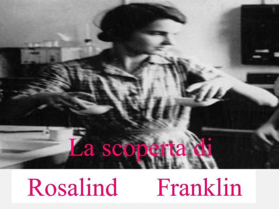 La scoperta di Rosalind Franklin