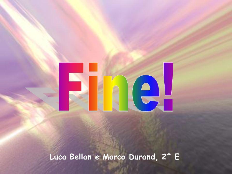 Luca Bellan e Marco Durand, 2^ E