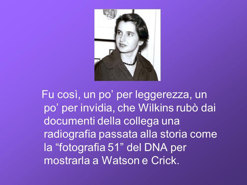 Fu così, un po per leggerezza, un po per invidia, che Wilkins rubò dai documenti della collega una radiografia passata alla storia come la fotografia