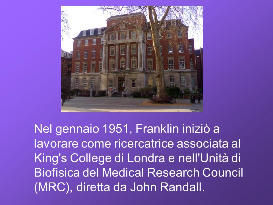 Nel gennaio 1951, Franklin iniziò a lavorare come ricercatrice associata al King's College di Londra e nell'Unità di Biofisica del Medical Research Co