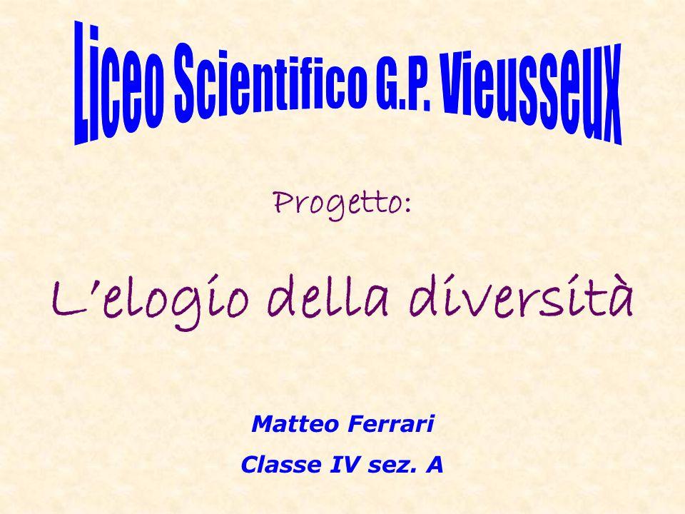 Matteo Ferrari Classe IV sez. A Progetto: Lelogio della diversità