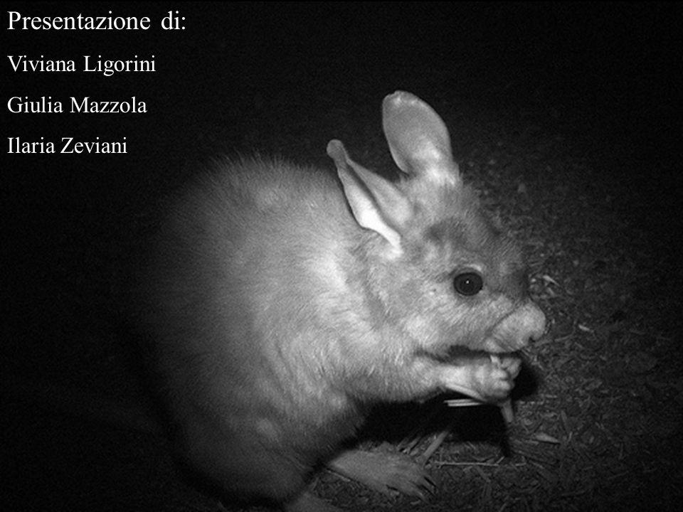 Presentazione di: Viviana Ligorini Giulia Mazzola Ilaria Zeviani