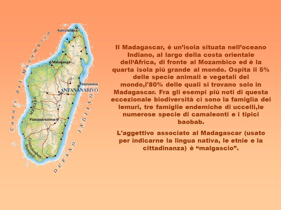 Il Madagascar, è unisola situata nelloceano Indiano, al largo della costa orientale dellAfrica, di fronte al Mozambico ed è la quarta isola più grande