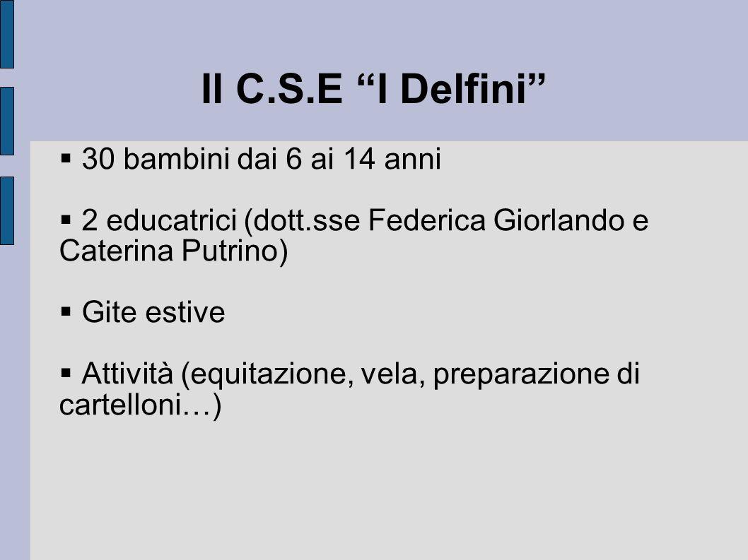 Il C.S.E I Delfini 30 bambini dai 6 ai 14 anni 2 educatrici (dott.sse Federica Giorlando e Caterina Putrino) Gite estive Attività (equitazione, vela,