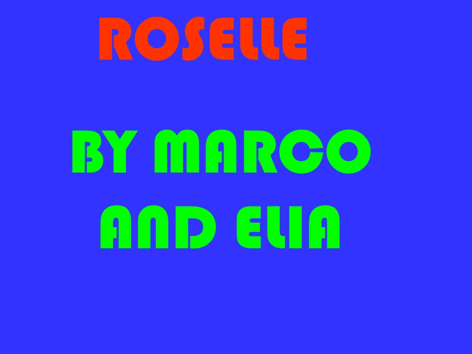 ROSELLE BY MARCO AND ELIA