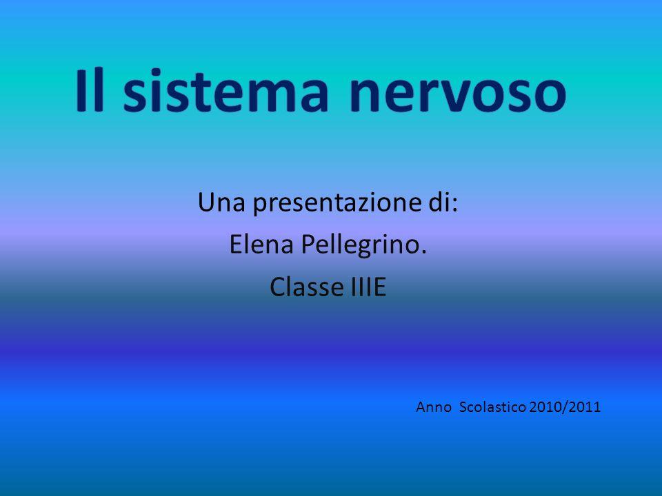 Una presentazione di: Elena Pellegrino. Classe IIIE Anno Scolastico 2010/2011