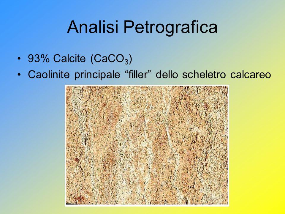 Analisi Petrografica 93% Calcite (CaCO 3 ) Caolinite principale filler dello scheletro calcareo
