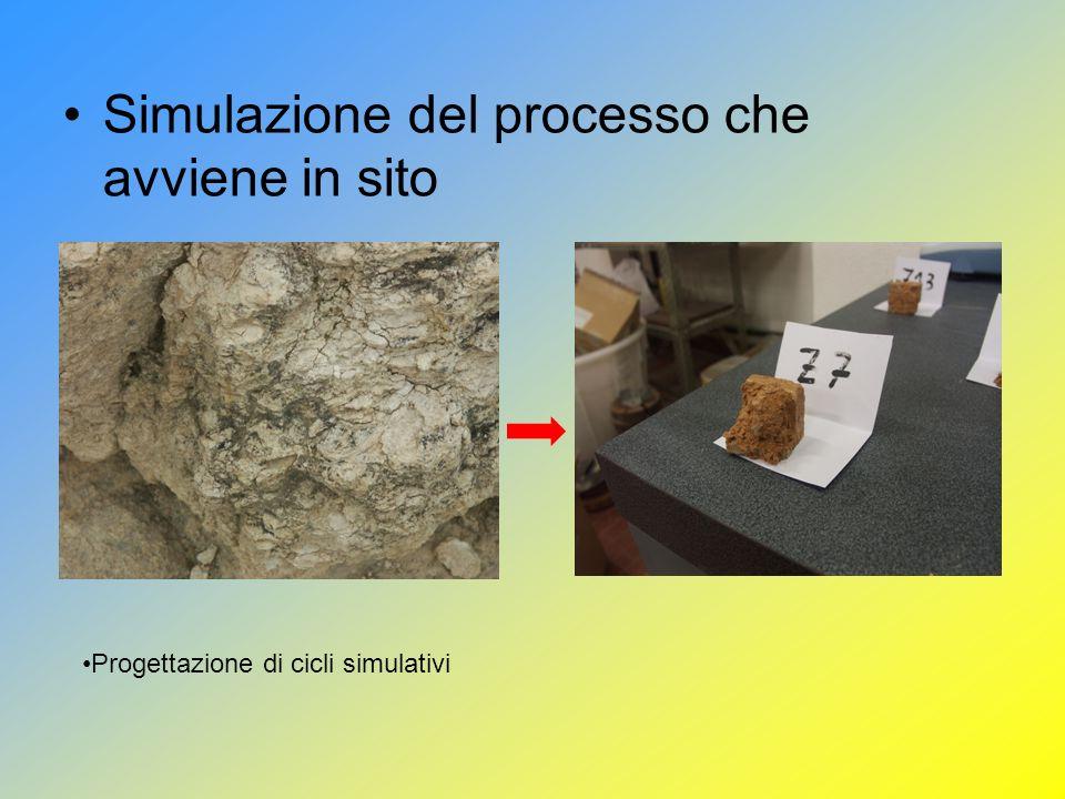 Simulazione del processo che avviene in sito Progettazione di cicli simulativi