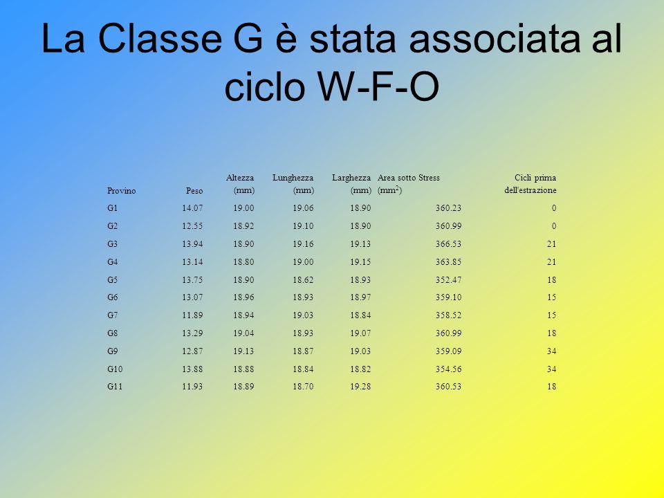 La Classe G è stata associata al ciclo W-F-O ProvinoPeso Altezza (mm) Lunghezza (mm) Larghezza (mm) Area sotto Stress (mm 2 ) Cicli prima dell estrazione G114.0719.0019.0618.90360.230 G212.5518.9219.1018.90360.990 G313.9418.9019.1619.13366.5321 G413.1418.8019.0019.15363.8521 G513.7518.9018.6218.93352.4718 G613.0718.9618.9318.97359.1015 G711.8918.9419.0318.84358.5215 G813.2919.0418.9319.07360.9918 G912.8719.1318.8719.03359.0934 G1013.8818.8818.8418.82354.5634 G1111.9318.8918.7019.28360.5318