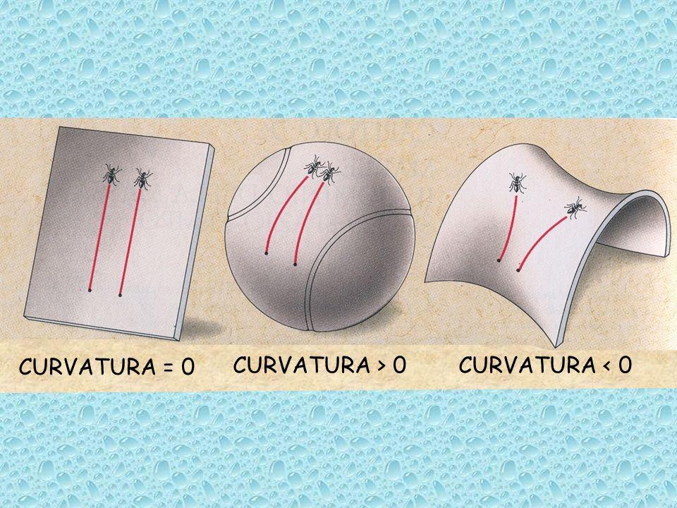 CURVATURA = 0 CURVATURA < 0CURVATURA > 0