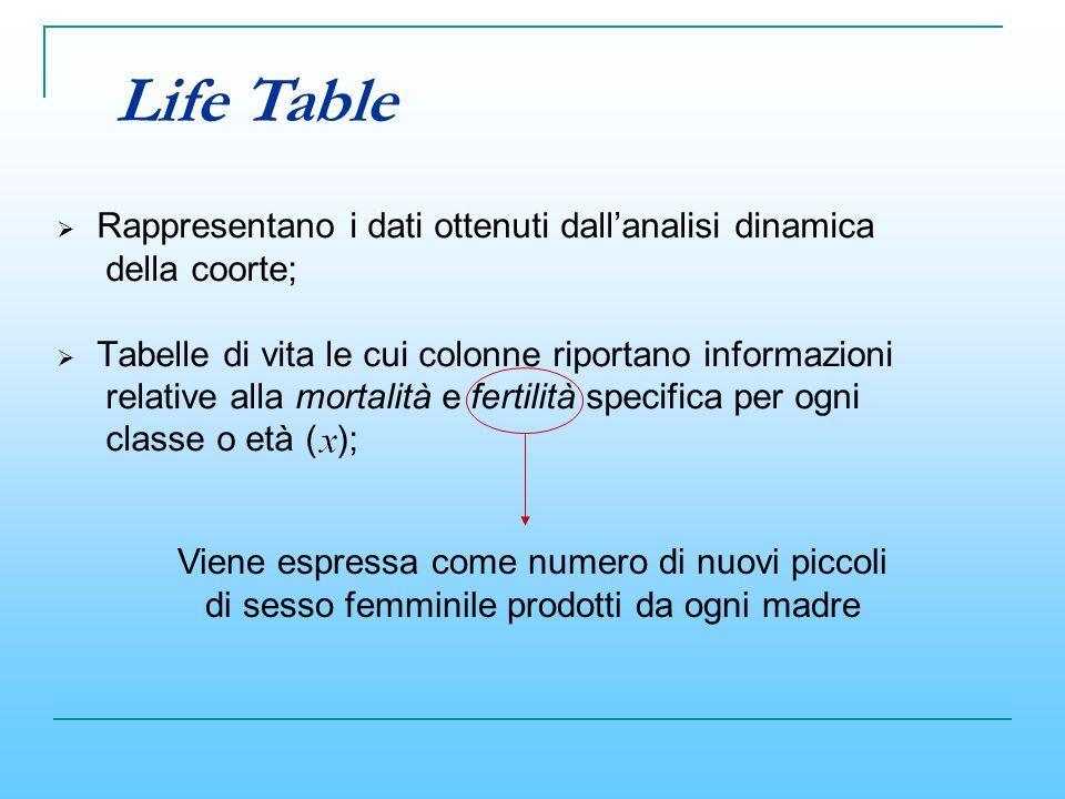 Rappresentano i dati ottenuti dallanalisi dinamica della coorte; Tabelle di vita le cui colonne riportano informazioni relative alla mortalità e ferti