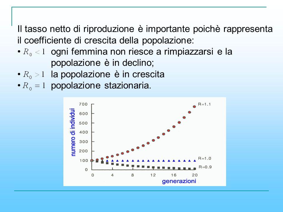 Il tasso netto di riproduzione è importante poichè rappresenta il coefficiente di crescita della popolazione: ogni femmina non riesce a rimpiazzarsi e