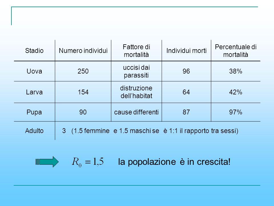StadioNumero individui Fattore di mortalità Individui morti Percentuale di mortalità Uova250 uccisi dai parassiti 9638% Larva154 distruzione dellhabit