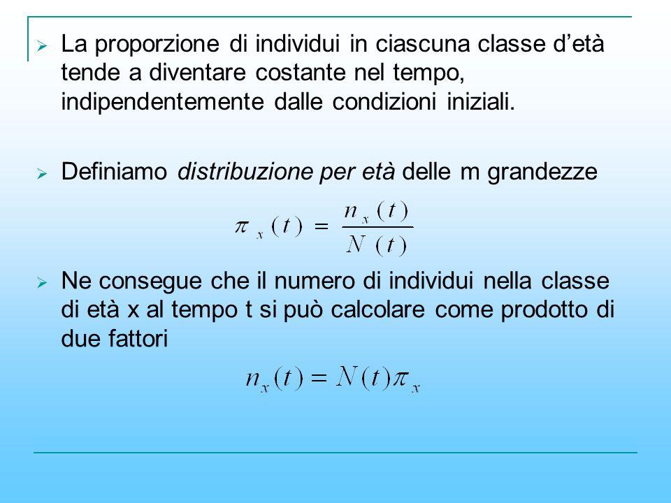 La proporzione di individui in ciascuna classe detà tende a diventare costante nel tempo, indipendentemente dalle condizioni iniziali. Definiamo distr