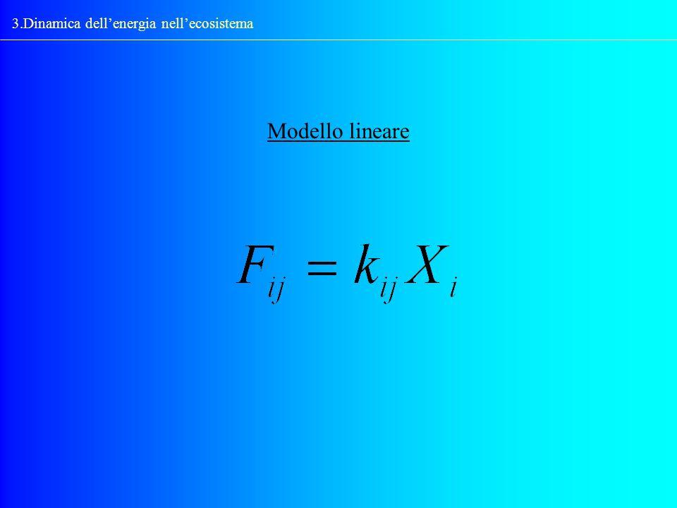 3.Dinamica dellenergia nellecosistema Modello lineare