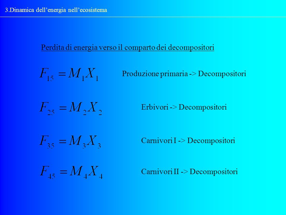 3.Dinamica dellenergia nellecosistema Perdita di energia verso il comparto dei decompositori Produzione primaria -> Decompositori Erbivori -> Decompos