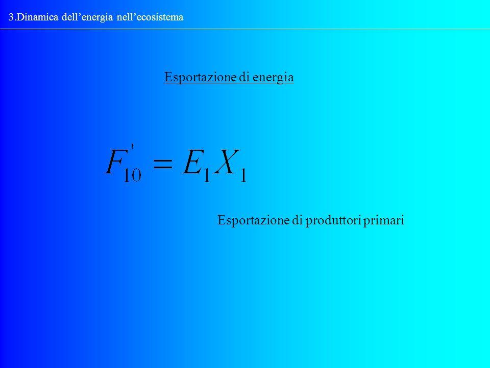 3.Dinamica dellenergia nellecosistema Esportazione di energia Esportazione di produttori primari
