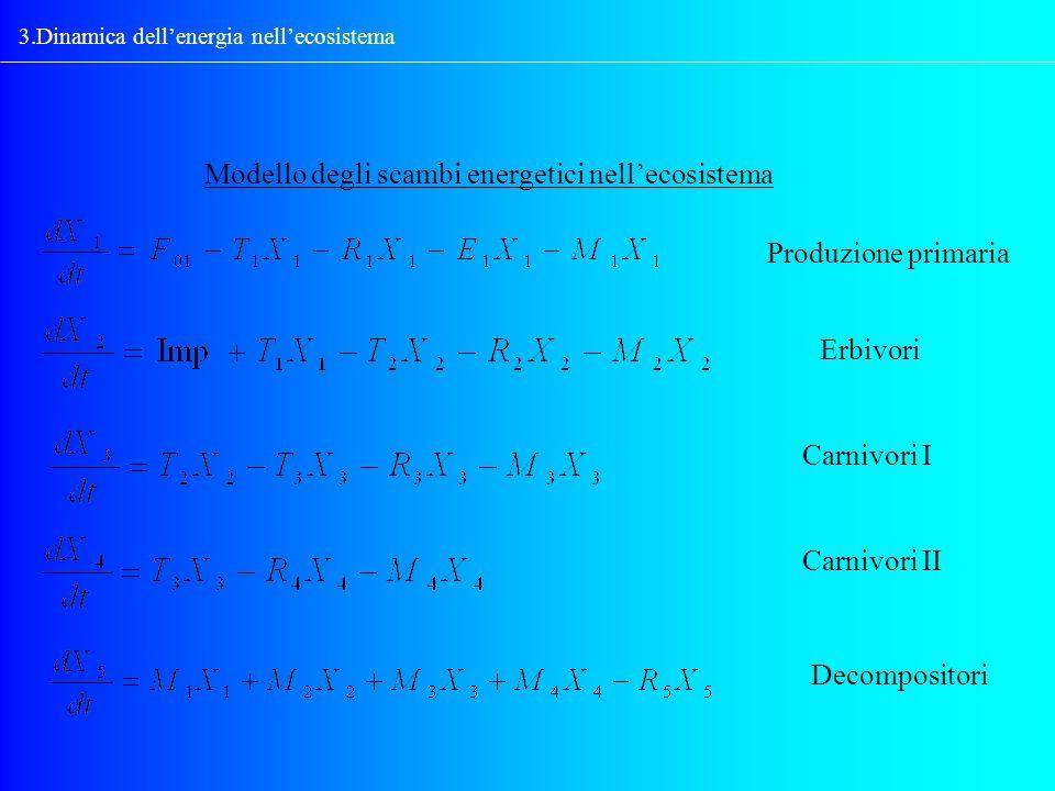 3.Dinamica dellenergia nellecosistema Modello degli scambi energetici nellecosistema Produzione primaria Erbivori Carnivori I Carnivori II Decomposito