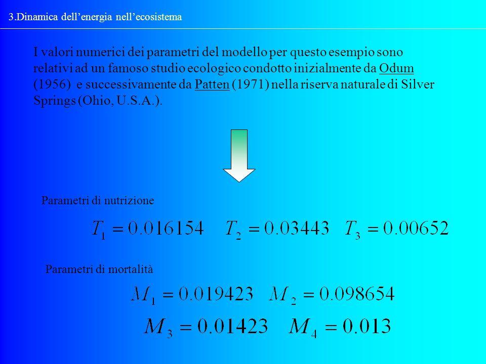 3.Dinamica dellenergia nellecosistema I valori numerici dei parametri del modello per questo esempio sono relativi ad un famoso studio ecologico condo