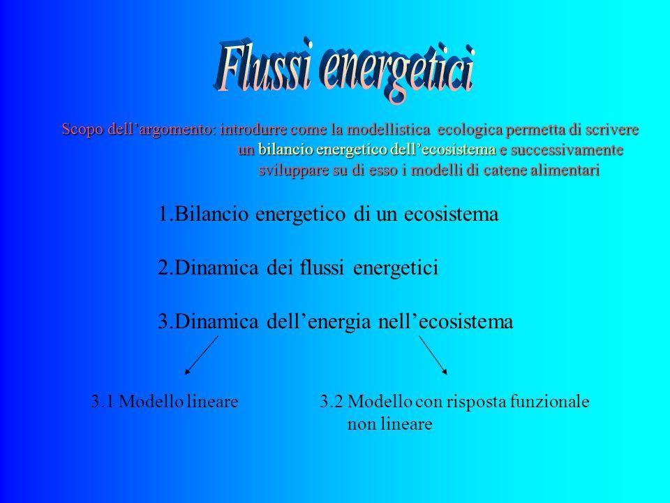 1.Bilancio energetico di un ecosistema 2.Dinamica dei flussi energetici 3.Dinamica dellenergia nellecosistema 3.1 Modello lineare3.2 Modello con rispo