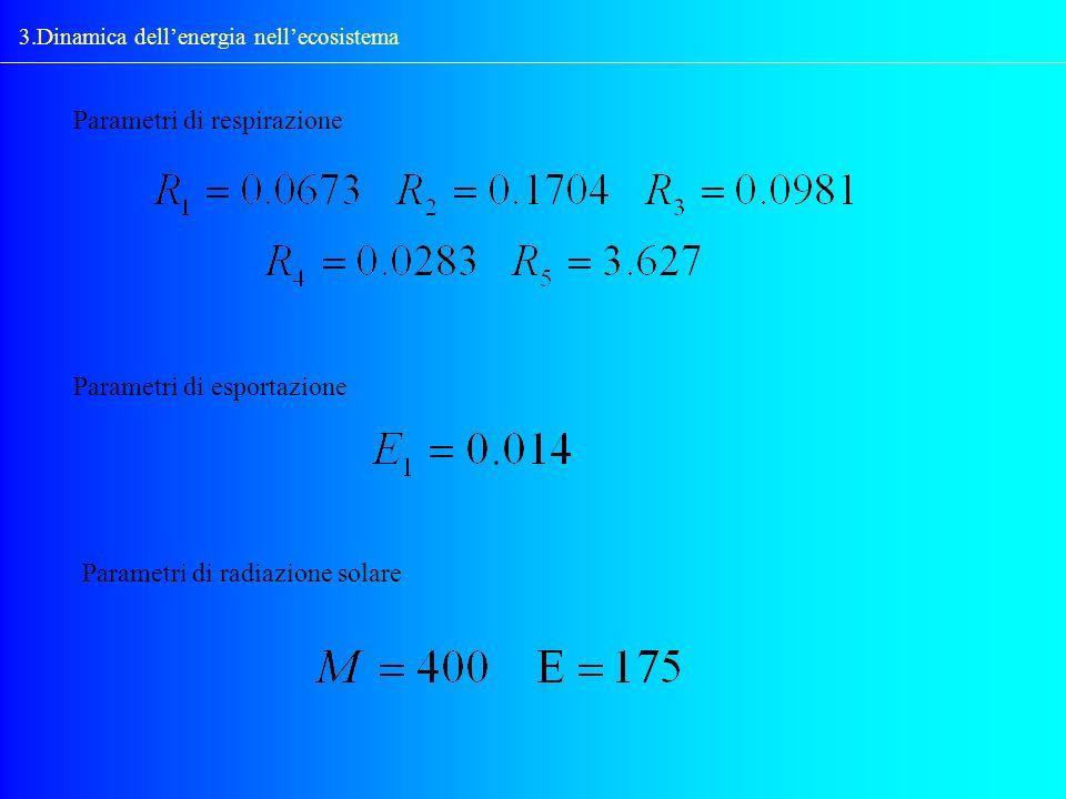 3.Dinamica dellenergia nellecosistema Parametri di respirazione Parametri di esportazione Parametri di radiazione solare