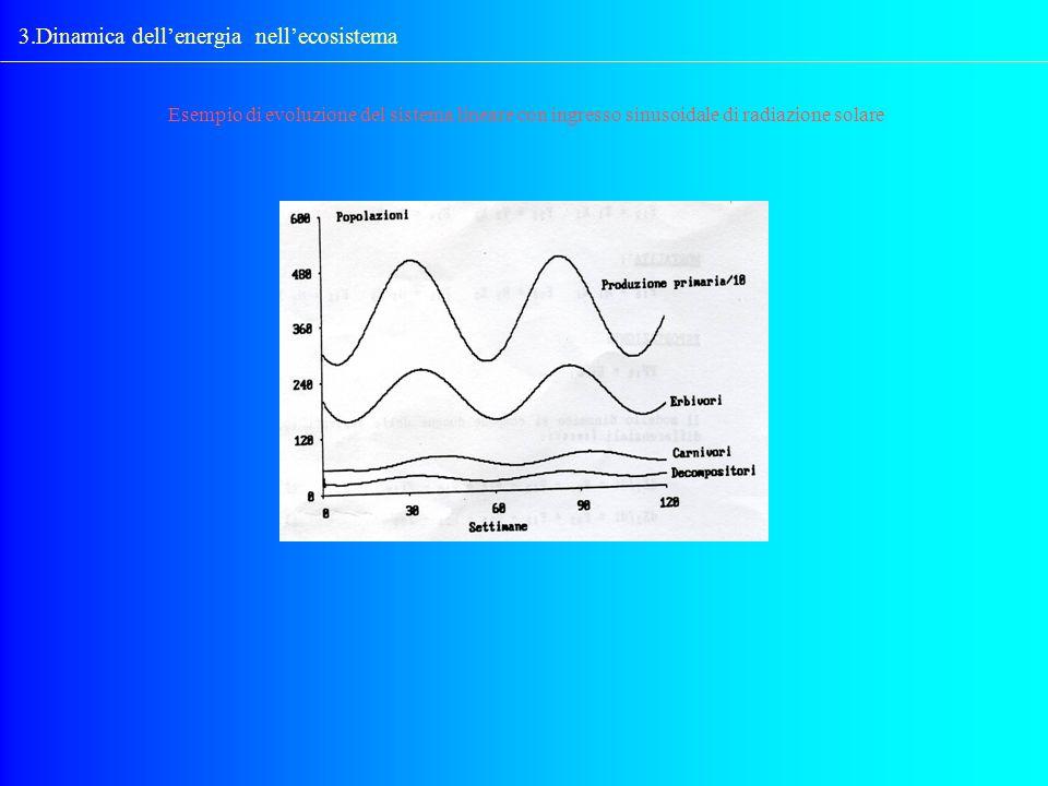 3.Dinamica dellenergia nellecosistema Esempio di evoluzione del sistema lineare con ingresso sinusoidale di radiazione solare