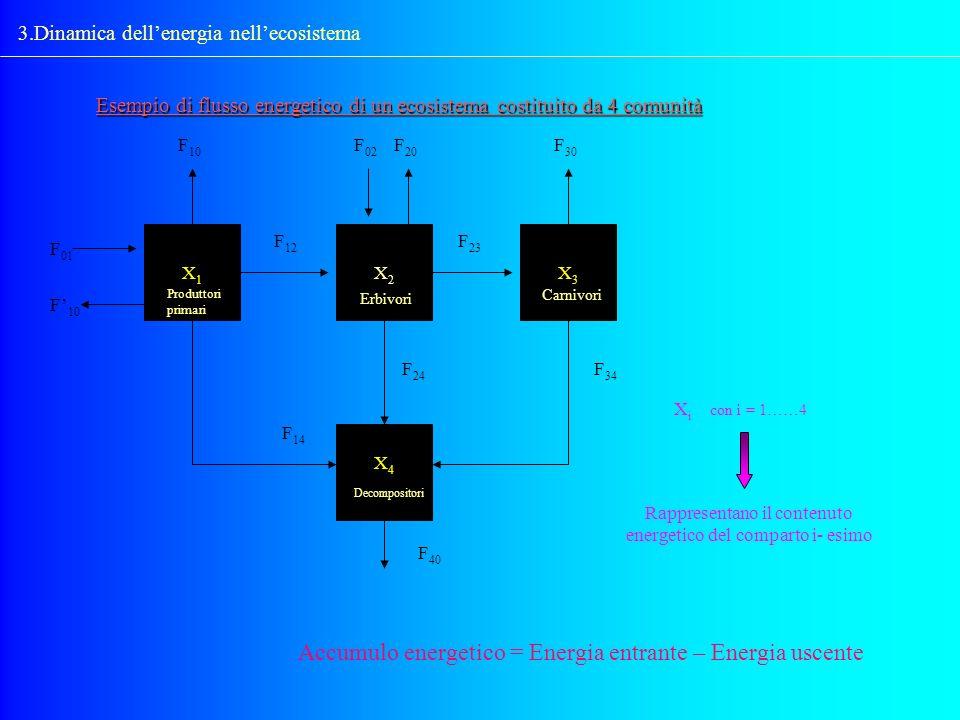 3.Dinamica dellenergia nellecosistema Esempio di flusso energetico di un ecosistema costituito da 4 comunità X1X1 X4X4 X3X3 X2X2 F 10 F 02 F 20 F 30 F