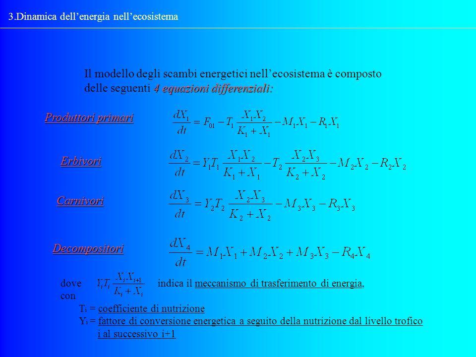 3.Dinamica dellenergia nellecosistema 4 equazioni differenziali: Il modello degli scambi energetici nellecosistema è composto delle seguenti 4 equazio