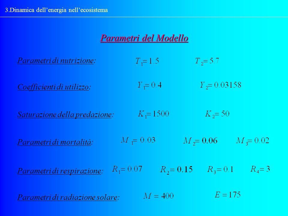 3.Dinamica dellenergia nellecosistema Parametri del Modello Coefficienti di utilizzo: Saturazione della predazione: Parametri di mortalità: Parametri