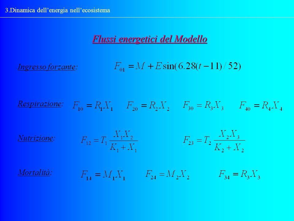 3.Dinamica dellenergia nellecosistema Ingresso forzante: Flussi energetici del Modello Respirazione: Nutrizione: Mortalità:
