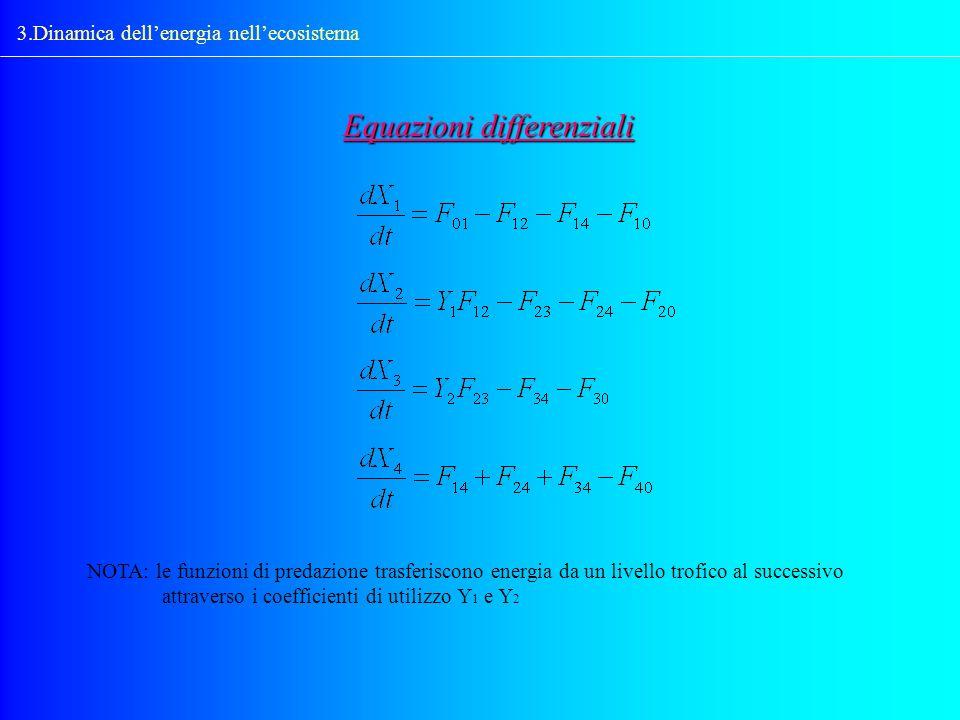 3.Dinamica dellenergia nellecosistema Equazioni differenziali NOTA: le funzioni di predazione trasferiscono energia da un livello trofico al successiv