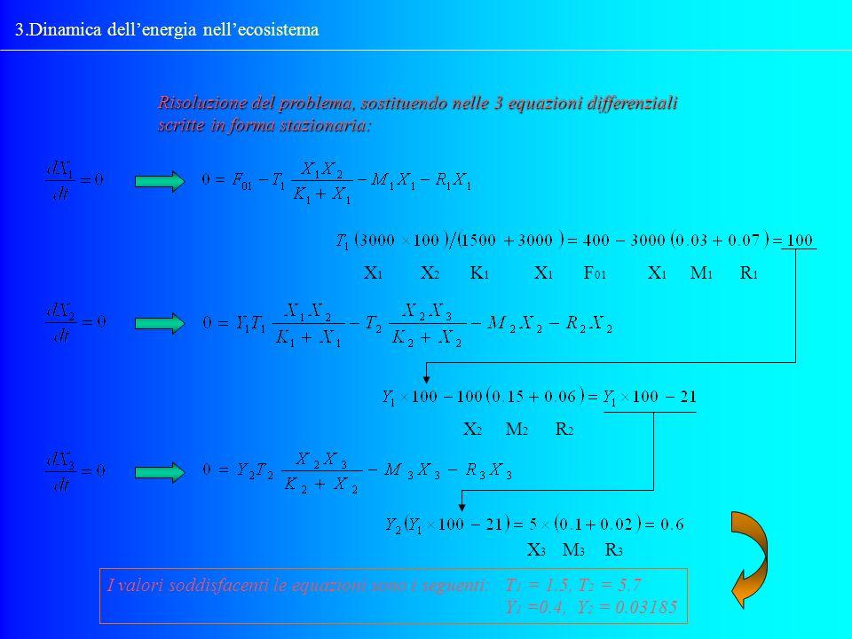 3.Dinamica dellenergia nellecosistema Risoluzione del problema, sostituendo nelle 3 equazioni differenziali scritte in forma stazionaria: X1X1 X2X2 X1