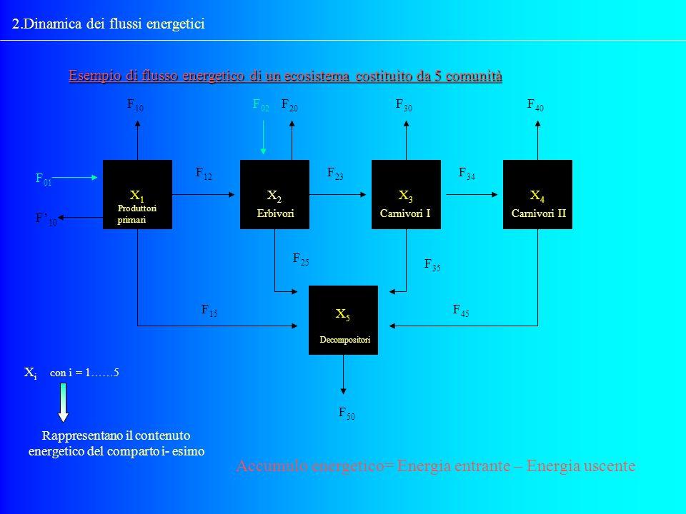 2.Dinamica dei flussi energetici Esempio di flusso energetico di un ecosistema costituito da 5 comunità X1X1 X5X5 X4X4 X3X3 X2X2 F 10 F 02 F 20 F 30 F