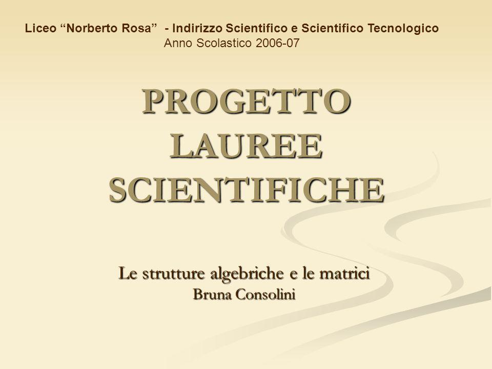 PROGETTO LAUREE SCIENTIFICHE Le strutture algebriche e le matrici Bruna Consolini Liceo Norberto Rosa - Indirizzo Scientifico e Scientifico Tecnologic