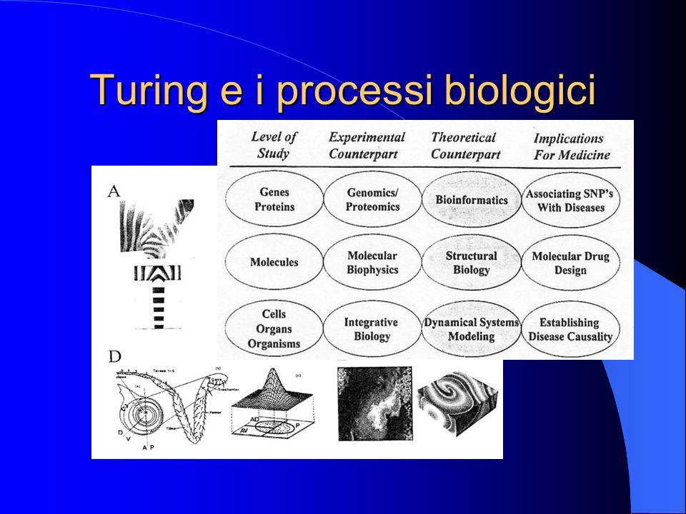 Turing e i processi biologici