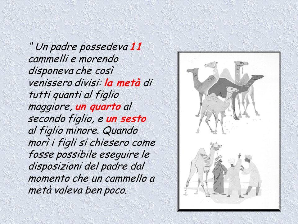 Un padre possedeva 11 cammelli e morendo disponeva che così venissero divisi: la metà di tutti quanti al figlio maggiore, un quarto al secondo figlio,