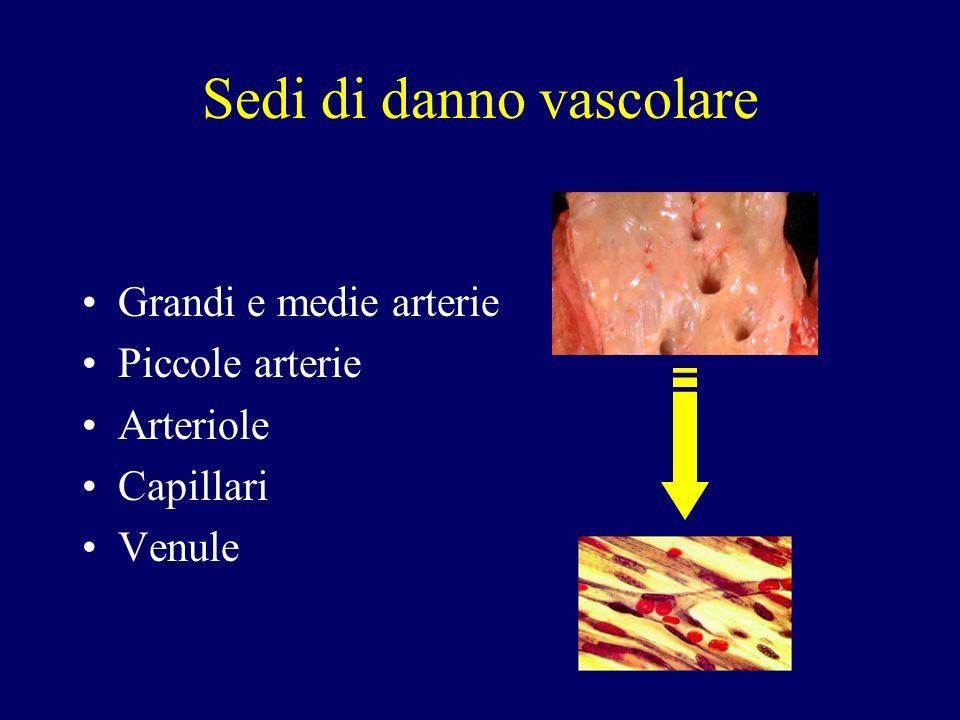 Classificazione delle vasculiti primarie e secondarie in base alla grandezza dei vasi maggiormente coinvolti ( Jennette et al.