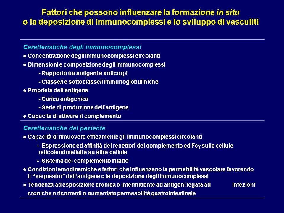 Vasculite di Churg-Strauss le 3 fasi della sindrome Prodromica: malattia atopica (rinite, asma) che può durare mesi o anni Eosinofilia ematica e tessutale Fase vasculitica: vasculite necrotizzante di polmone, reni, cuore, cute, nervi periferici Vasculiti dei piccoli vasi