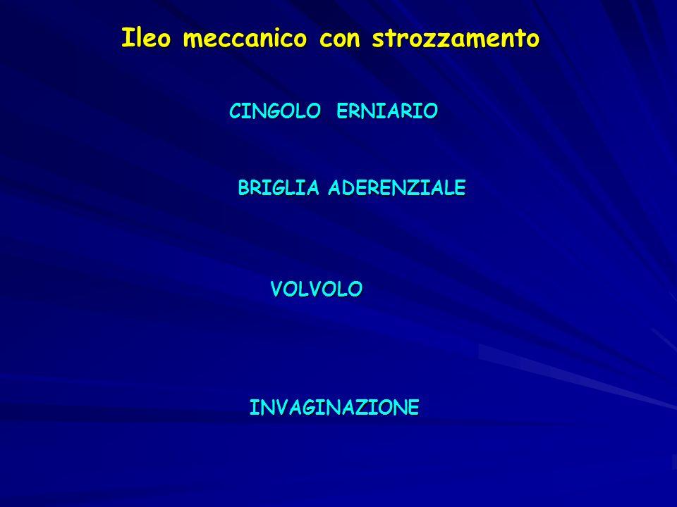Ileo meccanico con strozzamento CINGOLO ERNIARIO BRIGLIA ADERENZIALE VOLVOLO INVAGINAZIONE