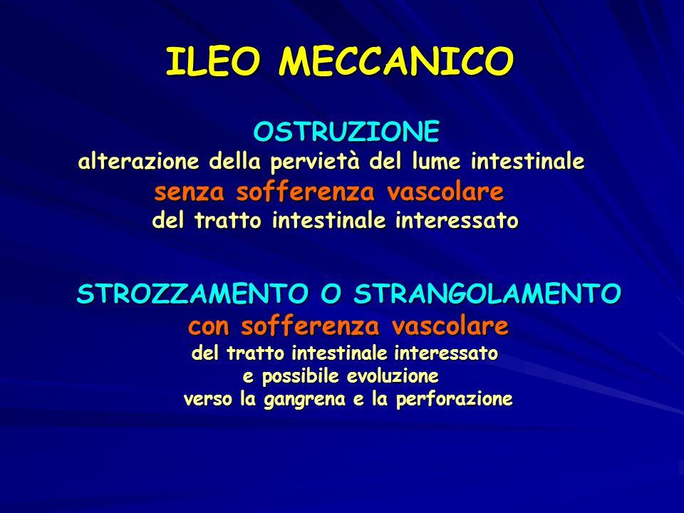 ILEO MECCANICO OSTRUZIONE OSTRUZIONE alterazione della pervietà del lume intestinale senza sofferenza vascolare del tratto intestinale interessato STROZZAMENTO O STRANGOLAMENTO STROZZAMENTO O STRANGOLAMENTO con sofferenza vascolare con sofferenza vascolare del tratto intestinale interessato del tratto intestinale interessato e possibile evoluzione e possibile evoluzione verso la gangrena e la perforazione verso la gangrena e la perforazione