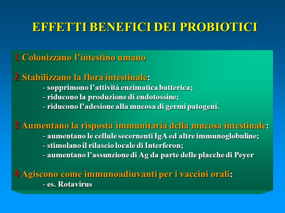 1 Colonizzano lintestino umano 2 Stabilizzano la flora intestinale: - sopprimono lattività enzimatica batterica; - riducono la produzione di endotossi