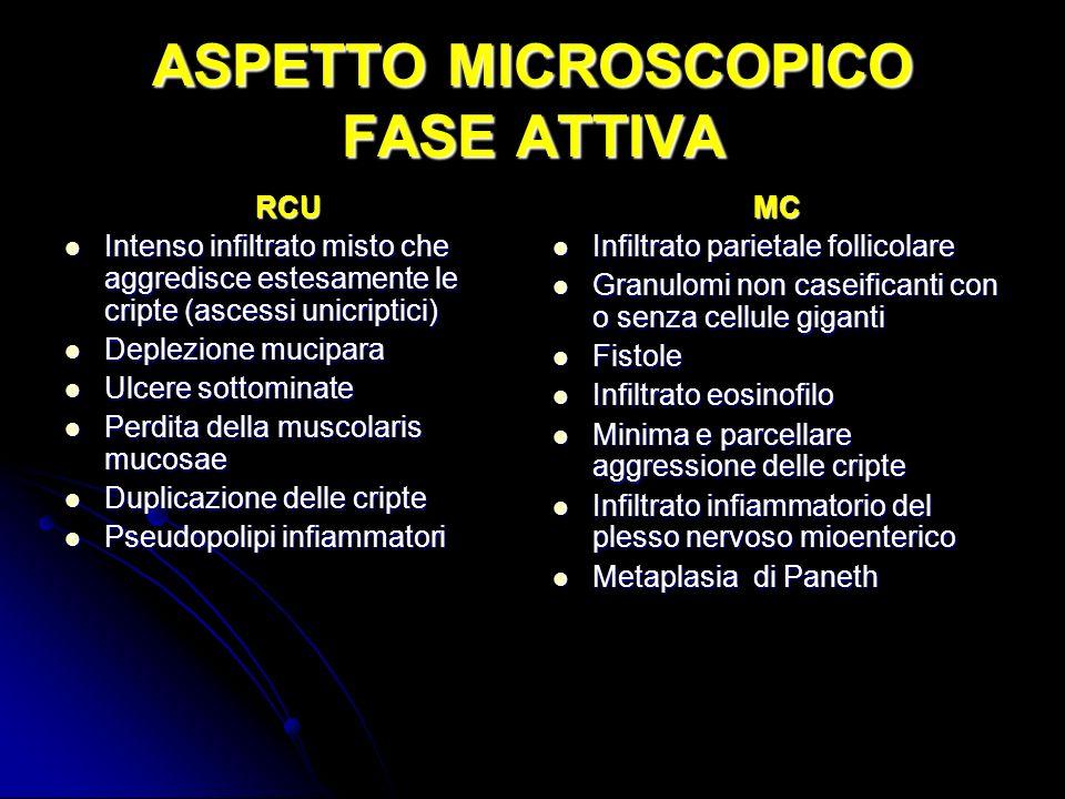 ASPETTO MICROSCOPICO FASE ATTIVA RCU Intenso infiltrato misto che aggredisce estesamente le cripte (ascessi unicriptici) Intenso infiltrato misto che