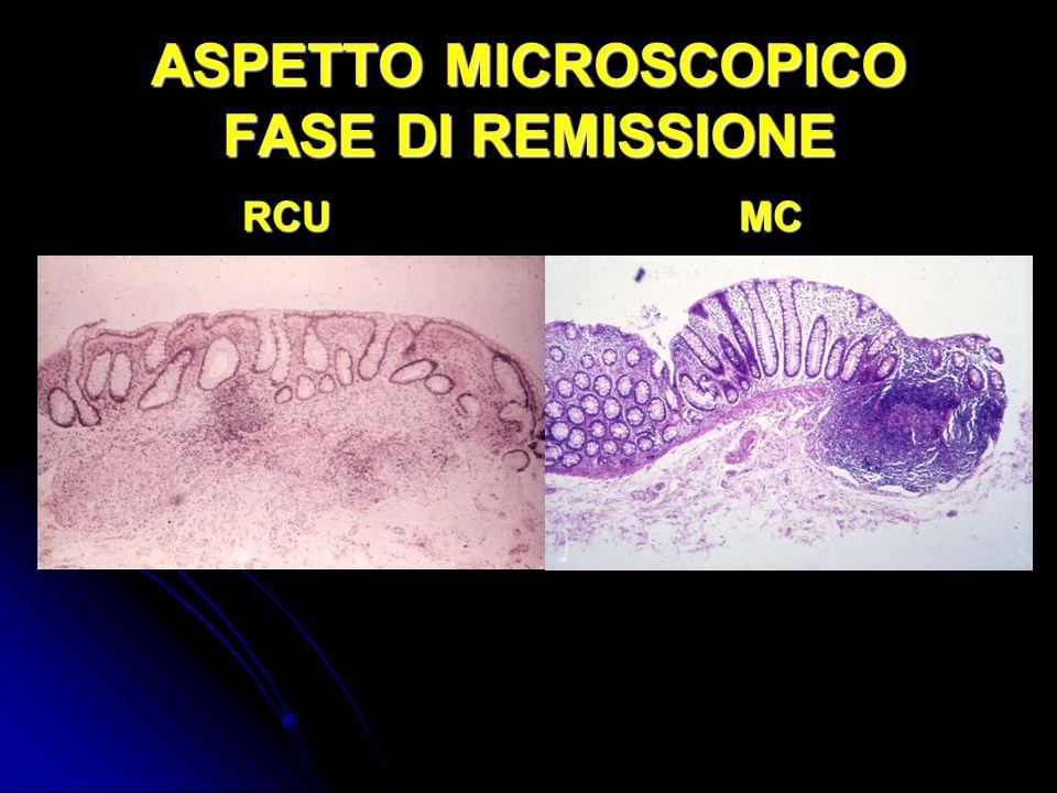 ASPETTO MICROSCOPICO FASE DI REMISSIONE RCUMC