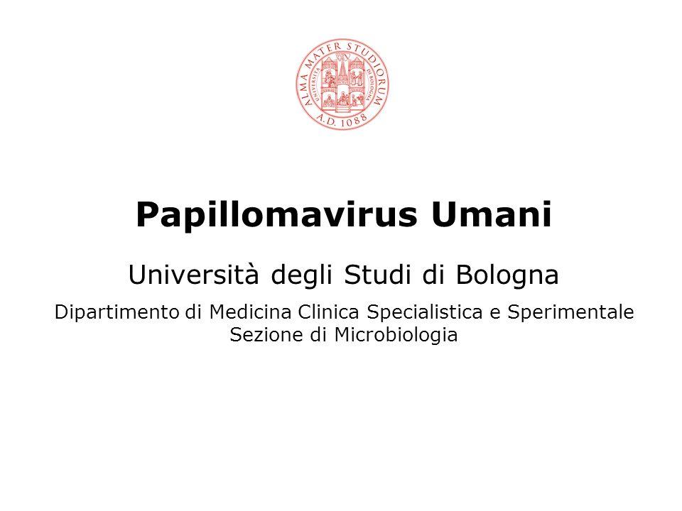 Papillomavirus Umani Università degli Studi di Bologna Dipartimento di Medicina Clinica Specialistica e Sperimentale Sezione di Microbiologia