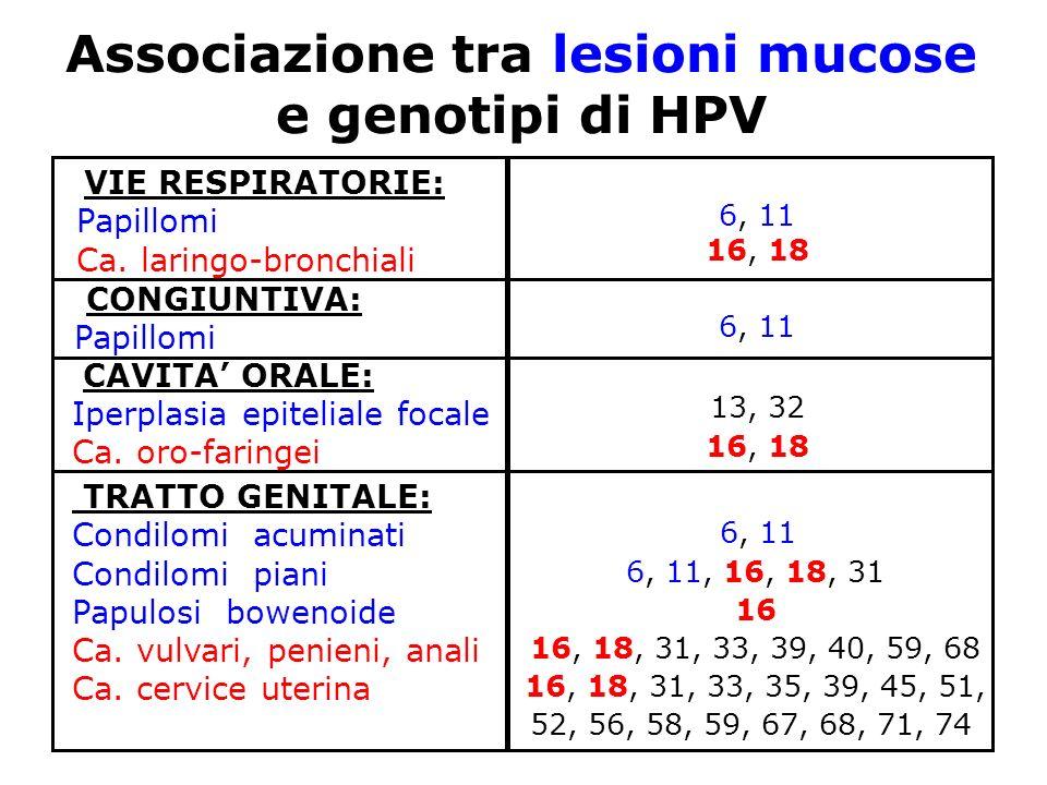 Associazione tra lesioni mucose e genotipi di HPV 6, 11 6, 11, 16, 18, 31 16 16, 18, 31, 33, 39, 40, 59, 68 16, 18, 31, 33, 35, 39, 45, 51, 52, 56, 58