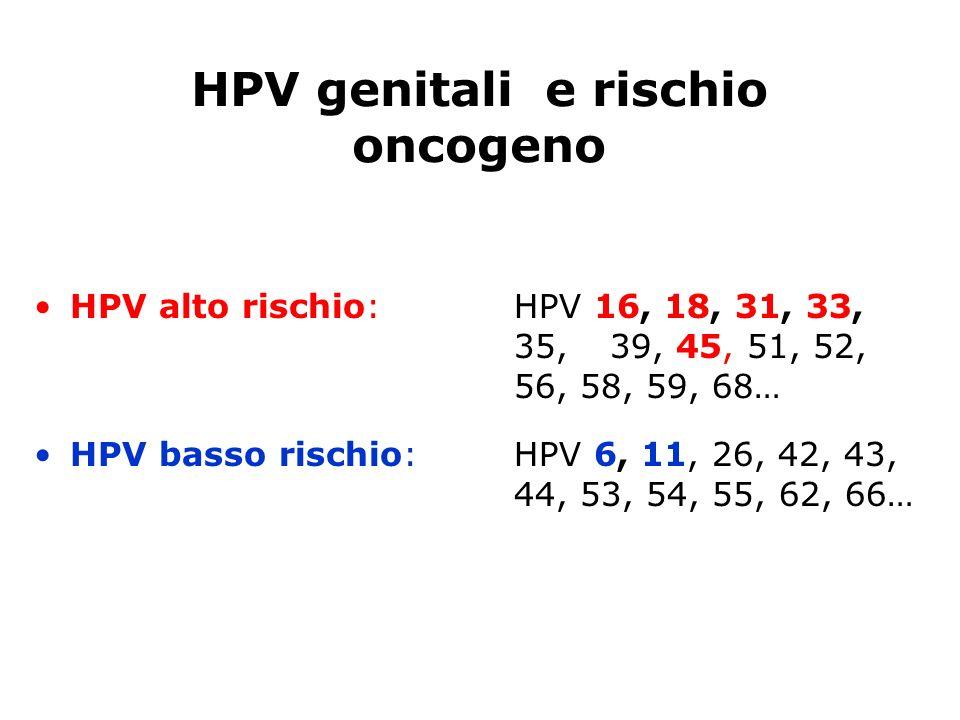 HPV genitali e rischio oncogeno HPV alto rischio: HPV 16, 18, 31, 33, 35,39, 45, 51, 52, 56, 58, 59, 68… HPV basso rischio: HPV 6, 11, 26, 42, 43, 44,