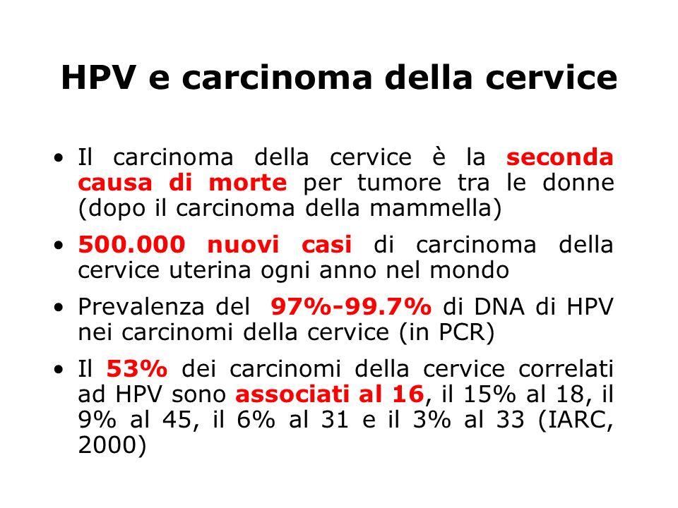 HPV e carcinoma della cervice Il carcinoma della cervice è la seconda causa di morte per tumore tra le donne (dopo il carcinoma della mammella) 500.00