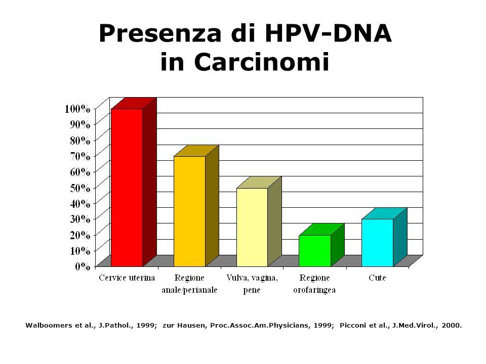Presenza di HPV-DNA in Carcinomi Walboomers et al., J.Pathol., 1999; zur Hausen, Proc.Assoc.Am.Physicians, 1999; Picconi et al., J.Med.Virol., 2000.